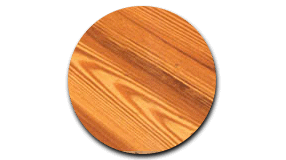Close up southern yellow pine
