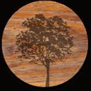 wood-tree