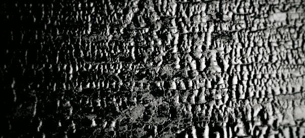charred black wood
