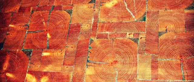 end grain reclaimed wood flooring
